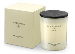 AMBIENTADORES-CASA-CERERIA-MOLLA-VELA- BLACK ORCHID & LILY